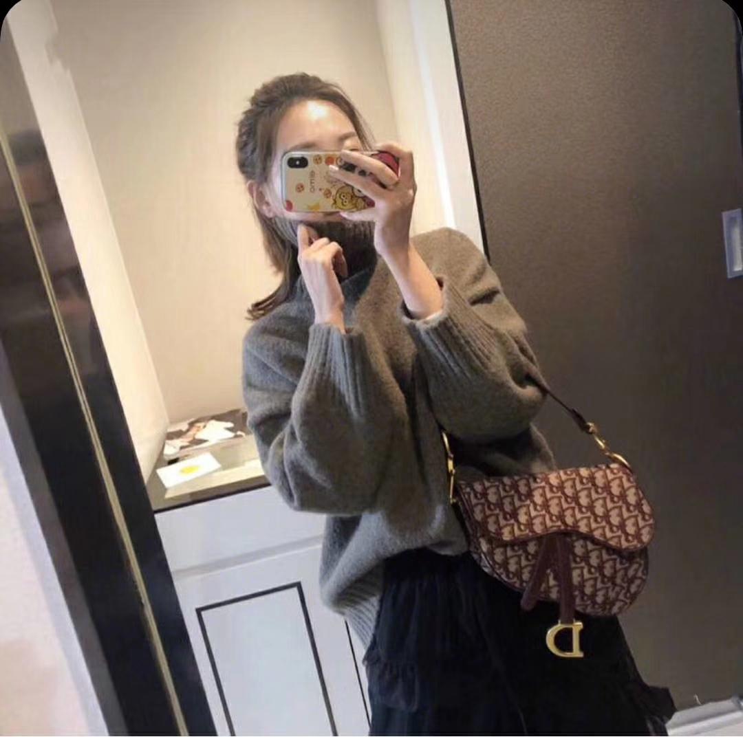 Dior 迪奥 全球风靡 马鞍包 上身很漂亮 时尚潮流的风向标